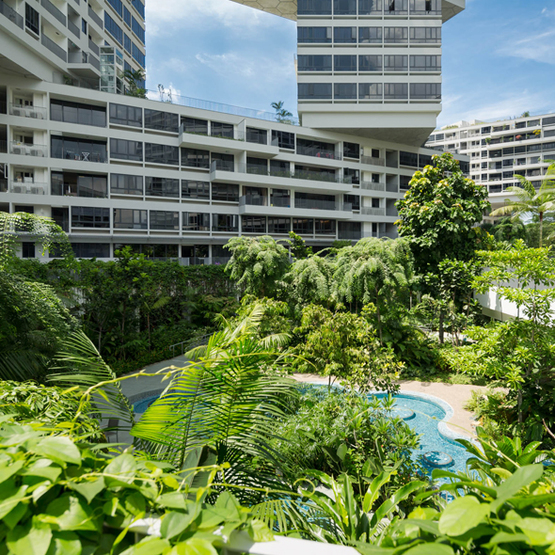 The%20interlace%20-%2001